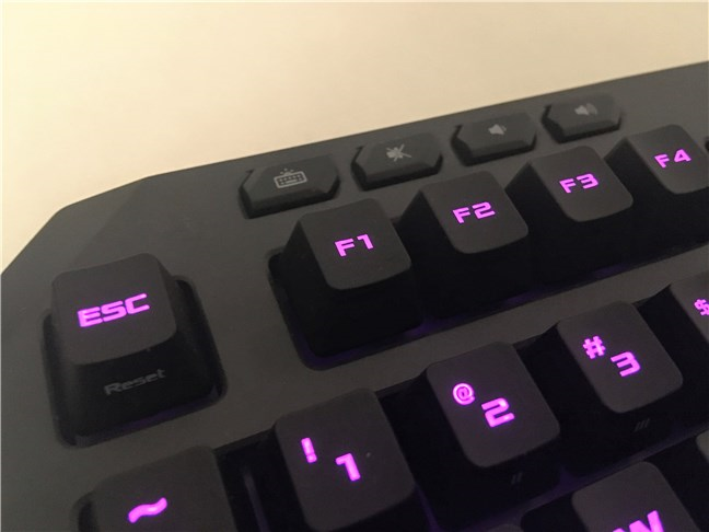 The media buttons found on the ASUS TUF Gaming K5 keyboard