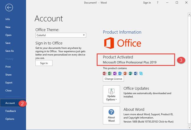 The Product version in Microsoft Office Professional Plus 2019