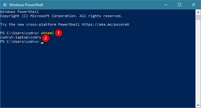 The whoami command in PowerShell tells you your user name