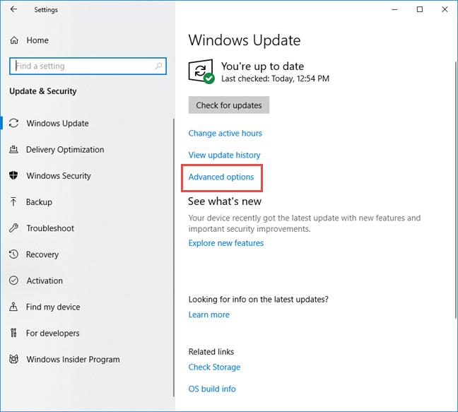 Click Advanced options in Windows Update