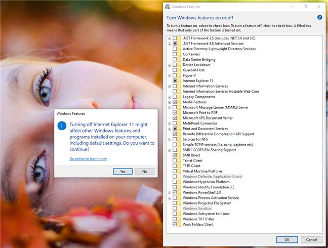 Turning off Internet Explorer 11