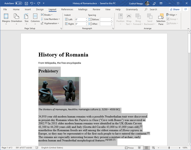 Selected text in Microsoft Word