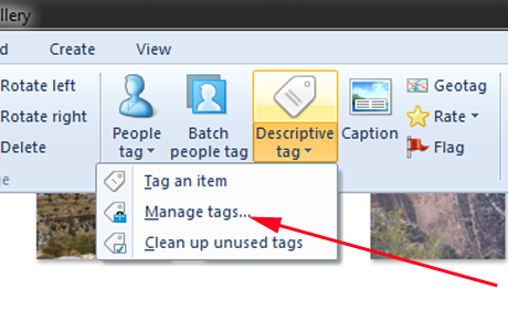 Windows Photo Gallery, Tags, Captions, Pictures