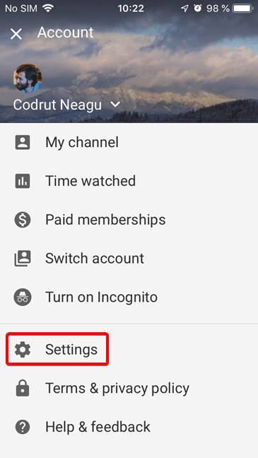 Open Settings for the YouTube app for iOS