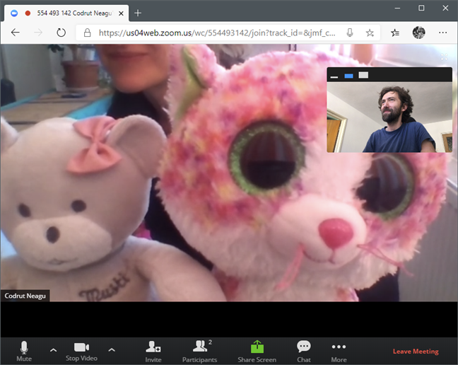 A Zoom meeting in a web browser