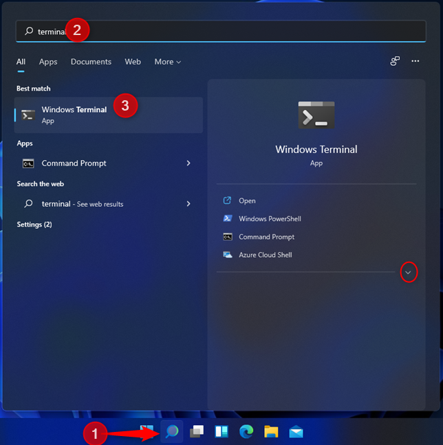 Search for terminal in Windows 11