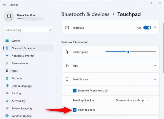 Check the box to use the touchpad for zooming in and out