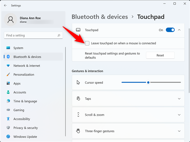 Uncheck the box to turn off touchpad when a mouse is plugged in Windows 11
