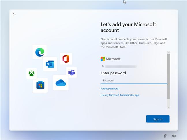 Enter the Microsoft's account password