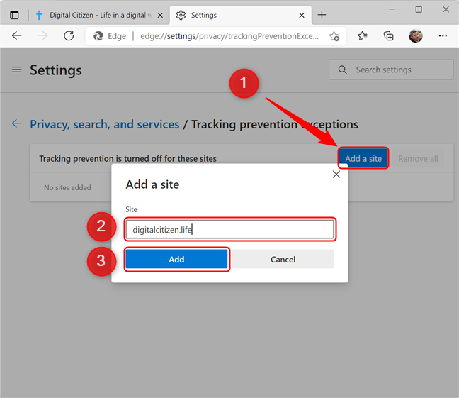 Adding a website to the Tracking prevention exceptions list
